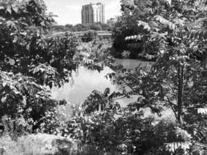 view of downtown London, Ontario across the Forks of the Thames in BW