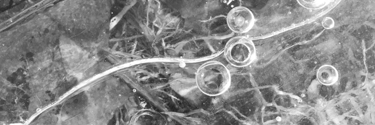 BW photo study in ice above grass with bubbles lit